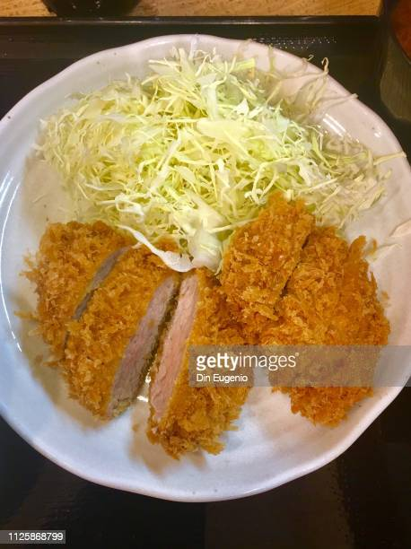 hirekatsu / japanese deep-fried pork cutlets. - côtelette photos et images de collection