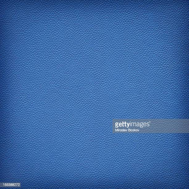 Hi-Res Animal Skin - Pig Navy Blue Leather Vignette Texture