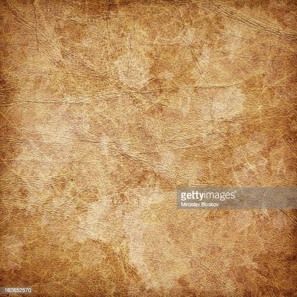 hi-res antique animal skin parchment wizened mottled vignette grunge texture - old parchment background burnt stock photos and pictures