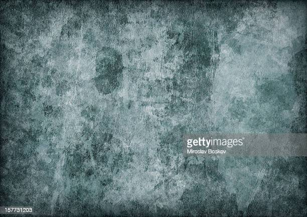 Hi-Res Antique Green Animal Skin Parchment Mottled Vignette Grunge Texture