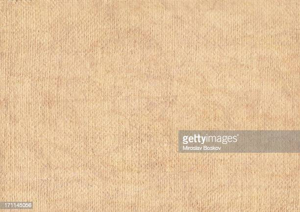 Hi-Res Artist's Primed Jute Canvas Coarse Grain Mottled Grunge Texture