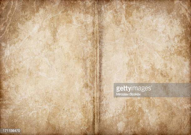 Hi-Res Opened Antique Book Blank Pages Vignette Grunge Texture