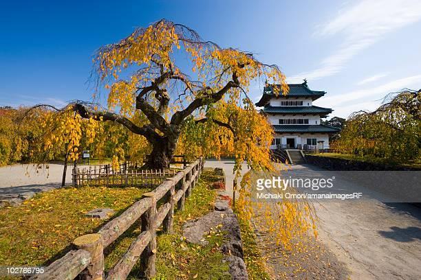 hirosaki castle in autumn. hirosaki, aomori prefecture, japan - hirosaki castle stock pictures, royalty-free photos & images