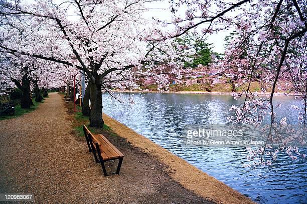 hirosaki castle park - hirosaki castle stock pictures, royalty-free photos & images