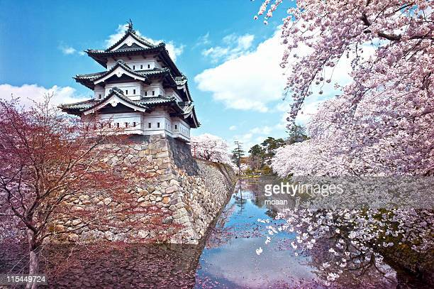 hirosaki castle - japan stock pictures, royalty-free photos & images
