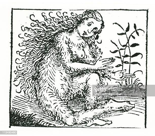 Hirsute woman a member of a tribe believed by the ancients to inhabit certain regions of the earth From Hartmann Schedel Liber chronicarum mundi...