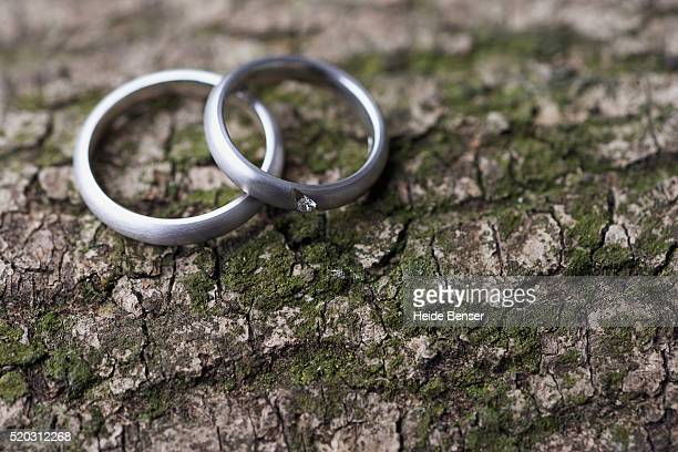His and hers wedding rings on top of bark