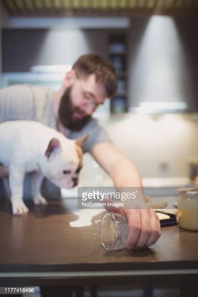 彼の犬はちょうど台所のカウンターにミルクをこぼして混乱させた - 不注意 ストックフォトと画像