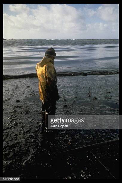His feet in oil, a volunteer looks at the sea that is covered by a huge oil-slick.