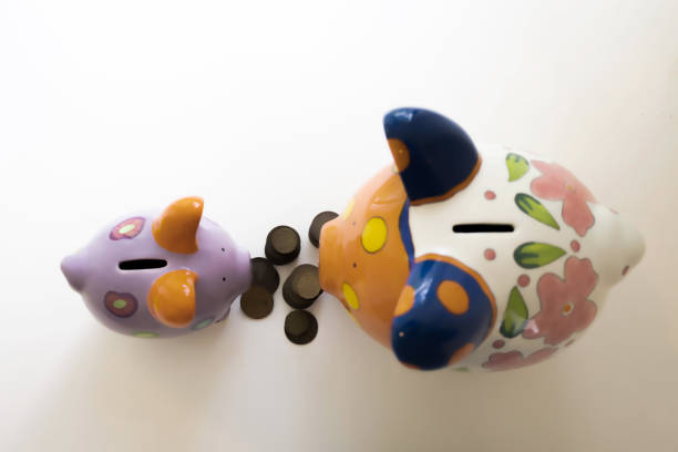 """""""his & hers"""" ceramic piggy banks with spare change coins between them"""