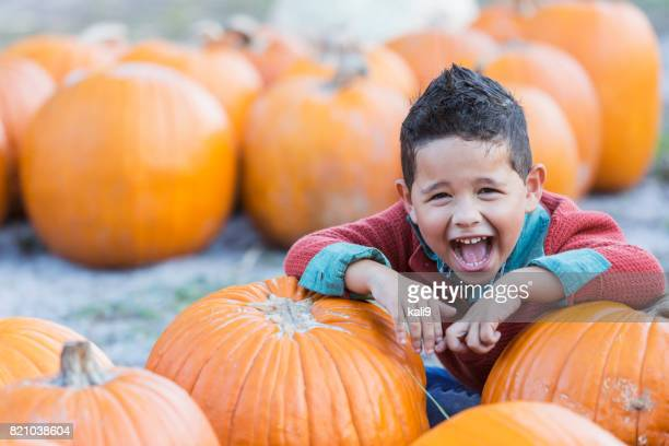 hispanic boy playing in pumpkin patch - pumpkin stock pictures, royalty-free photos & images