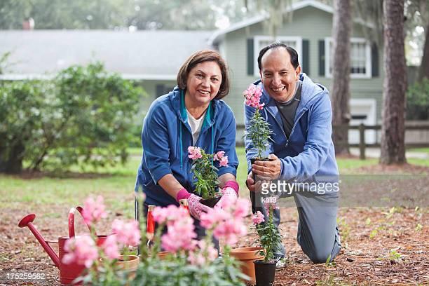 Hispanische paar Gartenarbeit