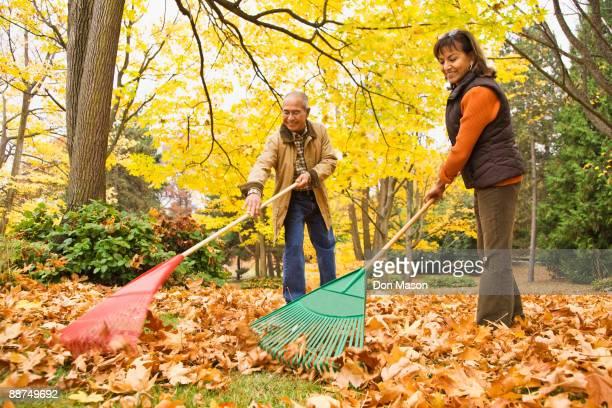 hispanic couple raking autumn leaves - rake stock pictures, royalty-free photos & images