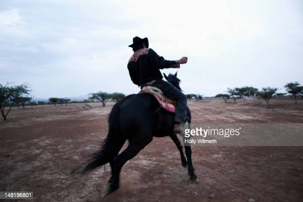 Hispanic cowboy riding horse