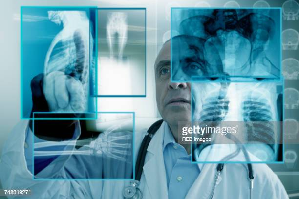 hispanic doctor using virtual computer screen - bones stock photos and pictures
