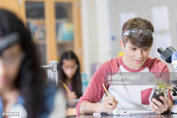 hispanic high school student in horticulture class - teenagers only stock pictures, royalty-free photos & images