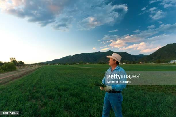 Hispanic man looking at crop