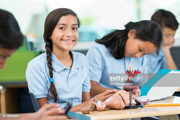 Hispanic schoolgirl studying human heart and brain in science class