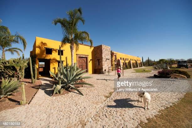 Hispanic woman chasing dog on ranch