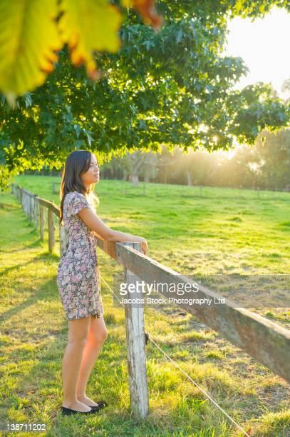 hispanic woman leaning on field fence - appoggiarsi foto e immagini stock