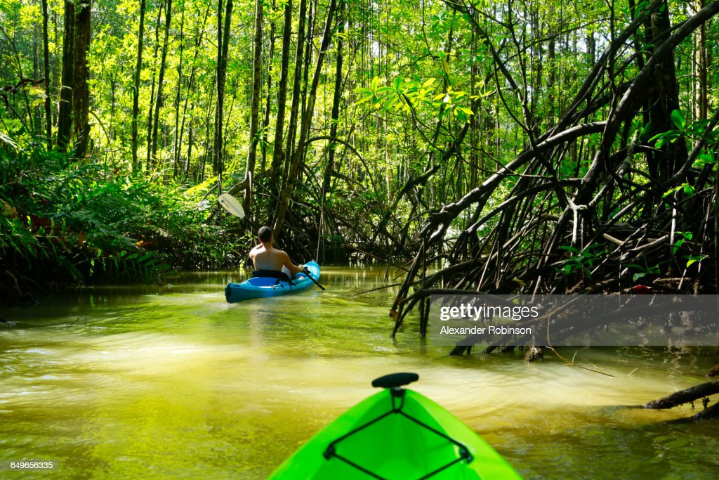 Hispanic woman rowing kayak on river