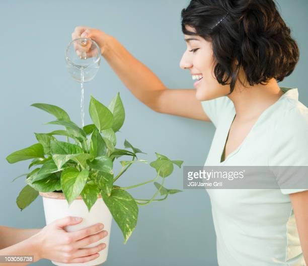 Hispanic woman watering plant