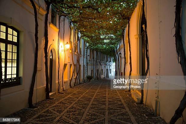 Historic cobbled street Calle Ciegos in Gonzalez Byass bodega, Jerez de la Frontera, Spain.