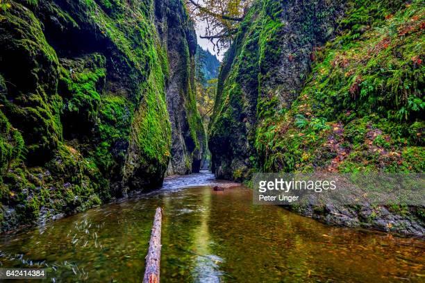 Historic Columbia River Highway,Oregon,USA