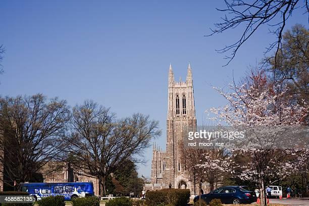 historic duke university campus in the spring - duke bildbanksfoton och bilder