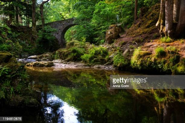 historic foley's bridge over shimna river running through tollymore forest park in northern ireland - northern ireland stock pictures, royalty-free photos & images