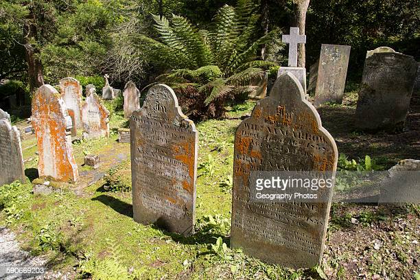 Historic gravestones amidst subtropical plants St Just in Roseland Cornwall England UK