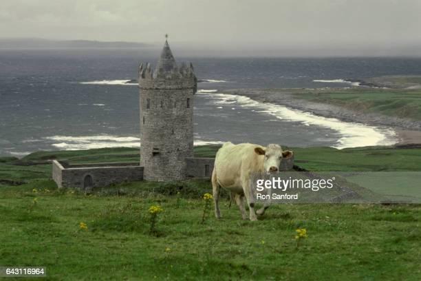 historic irish round tower. doonagore castle - irish round tower stock photos and pictures