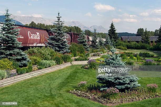 historic railroad station with train - barrväxter bildbanksfoton och bilder