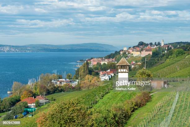 Historic Rebgut Haltnau vineyard on Lake Constance, with the town of Meersburg am Bodensee on the right, Lake Constance, Meersburg, Baden-Wuerttemberg, Germany