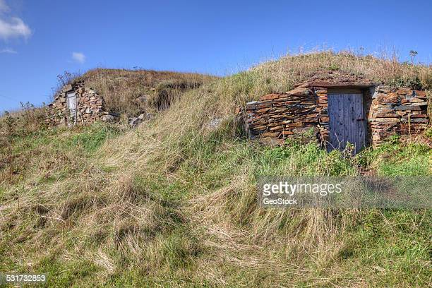 Historic, traditional root cellars