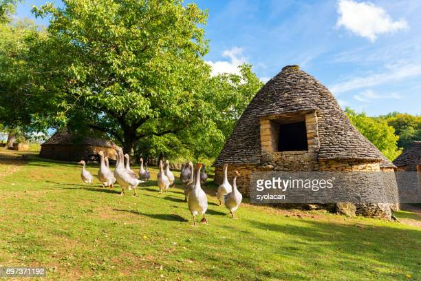historic village cabanes du breuil in france - syolacan stock pictures, royalty-free photos & images