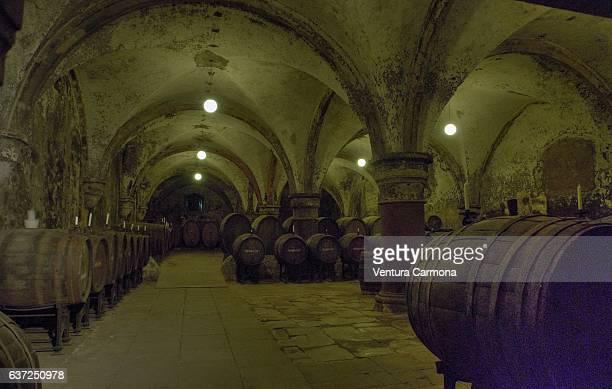 historic wine cellar of eberbach abbey - germany - cisterciense - fotografias e filmes do acervo