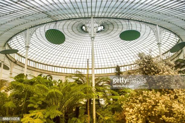 Historical public Botanic gardens glasshouse details at westend glasgow scotland england UK