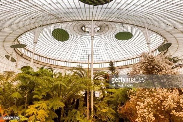 Détails historiques jardins publics de botanique serre westend glasgow Ecosse Angleterre UK