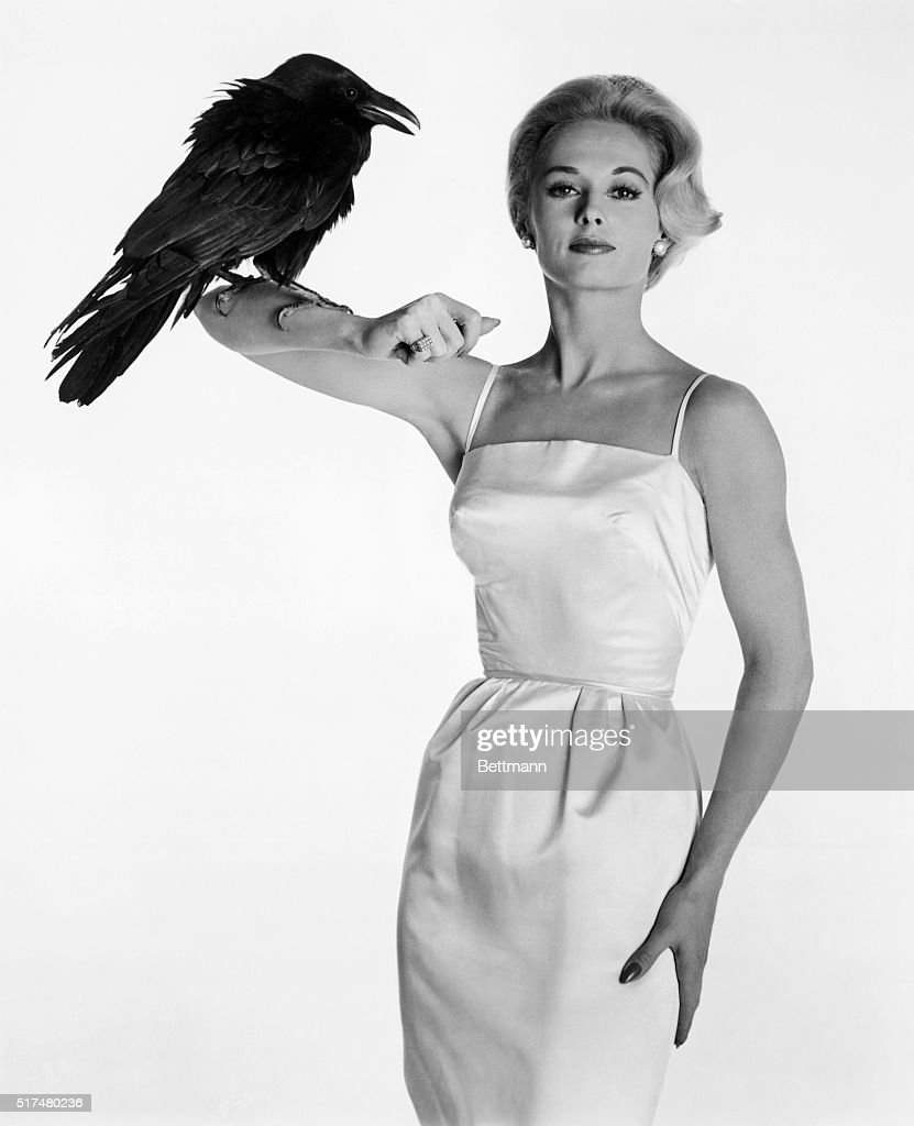 Hitchcock Discovery* - Tippi Hedren poses prettily with Buddy, the Raven, between scenes of Alfred Hitchcock's The Birds, based on the classic suspense thriller by Daphne du Maurier and starring Rod Taylor, Jessica Tandy, Suzanne Pleshette and introducing Miss Hedren. A Universal release.