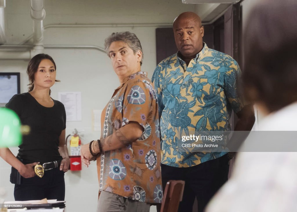 Hawaii Five-0 : News Photo