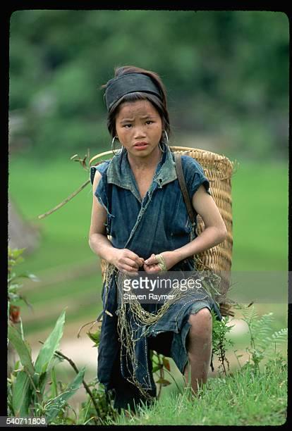 Hmong Tribeswoman Near Sa Pa Vietnam