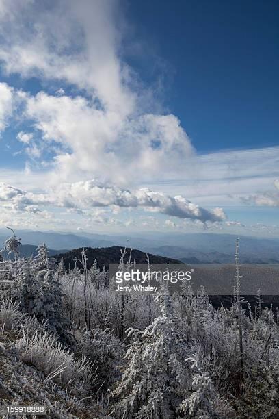 hoar frost, clingmans dome - clingman's dome fotografías e imágenes de stock
