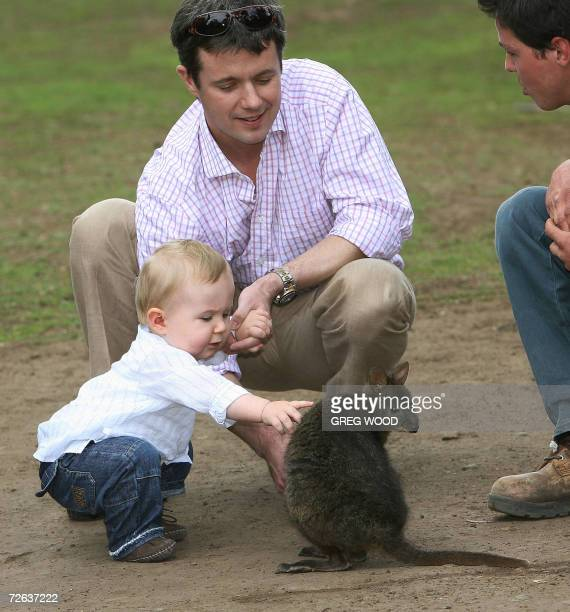 Prince Frederik husband of Denmark's Crown Princess Mary and their oneyearold son Christian meet with a wallabie as they visit the Bonorong Wildlife...