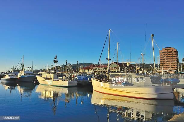 Hobart Fishing Trawlers At Sunrise