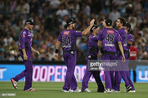 Hobart players celebrate the wicket of ALex Ross of Adelaide during the Big Bash League match between the Adelaide Strikers and the Hobart Hurricanes...