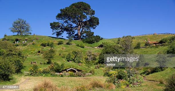 hobbiton - the shire - the hobbit stock pictures, royalty-free photos & images