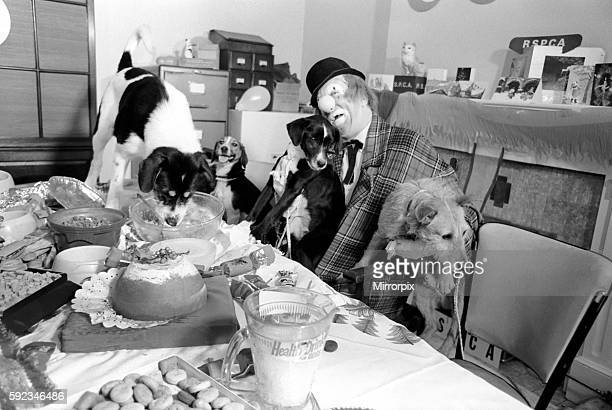 'Hobo' plays host to the doggy guests enjoying a menu of biscuits dogmeat turkey gravysauce and chocolatedrops December 1970 7011583014