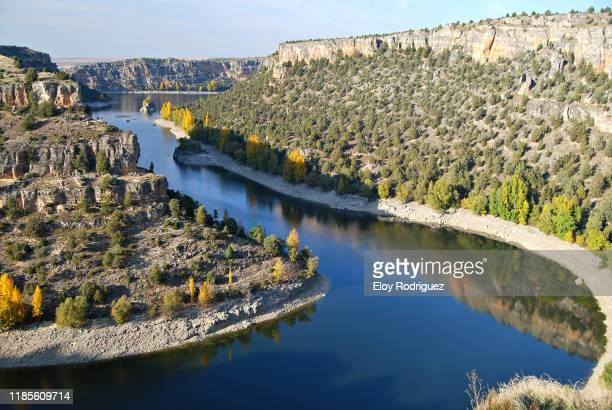 hoces del río duratón, segovia. - segovia stock pictures, royalty-free photos & images
