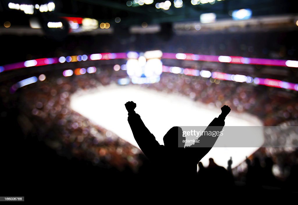 Hockey Excitement : Stock Photo